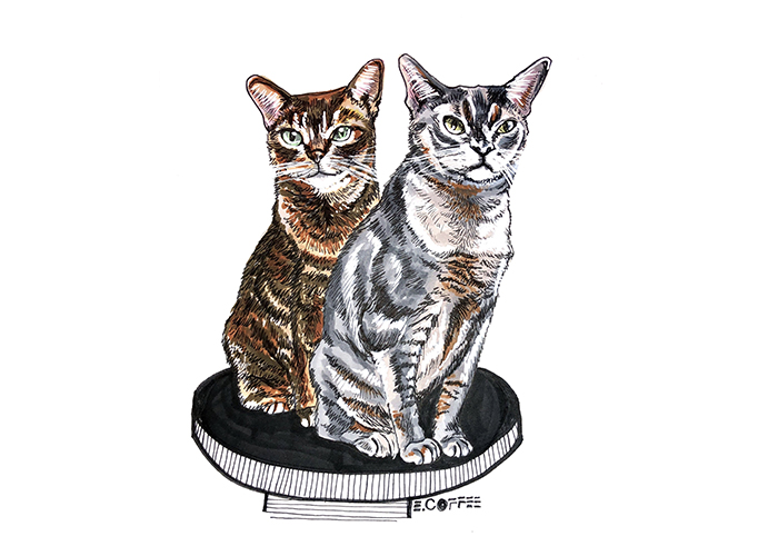petportraits-hardcopy-burns