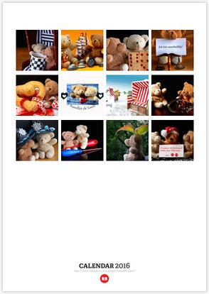 Little Bear's Adventures Overview