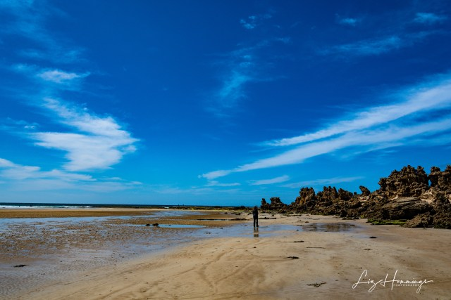 Aireys Inlet October 2019-2892