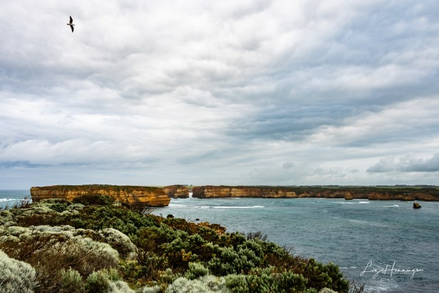 Port Campbell Childers Cove Sandy Bay and surrounding beaches October 2019-3187