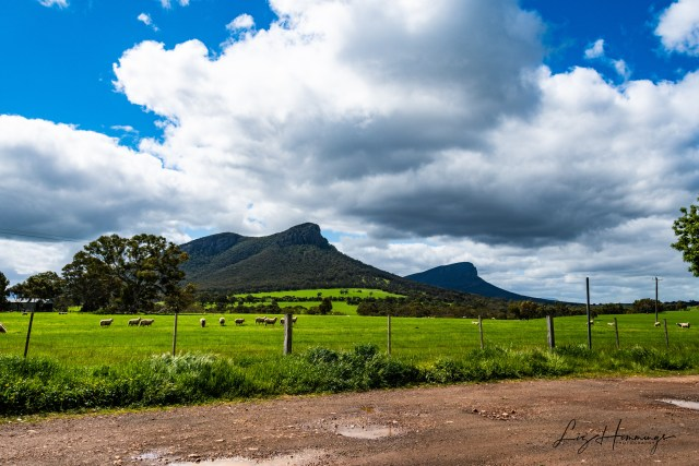 The Grotto to Halls Gap October 2019-3444