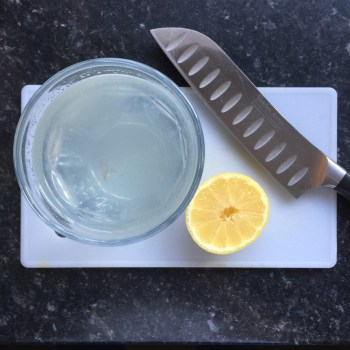 Lemon and Sparkling Water. Slow Burn - Zero Sugar 5:2 App - LizianEvents. Lizian Events. Wellbeing. Well Being. 5:2 Diet
