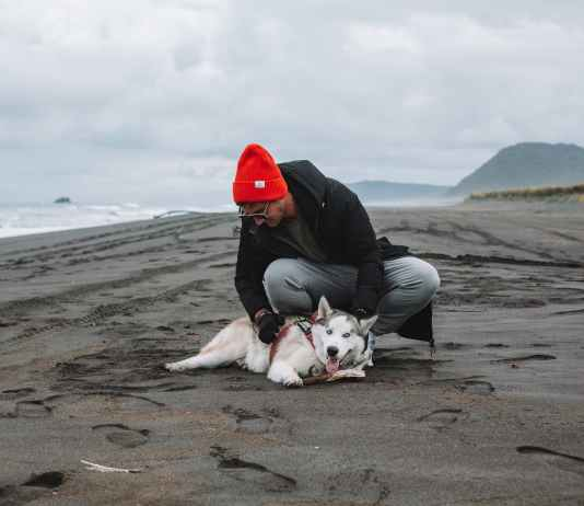 man playing with dog on seashore on cloudy chilly day