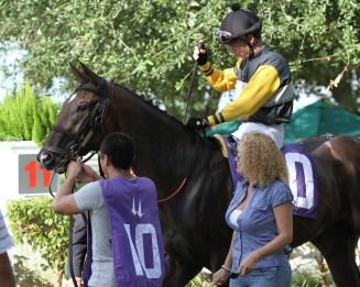 Crumb (FL) with jockey Antonio Gallardo