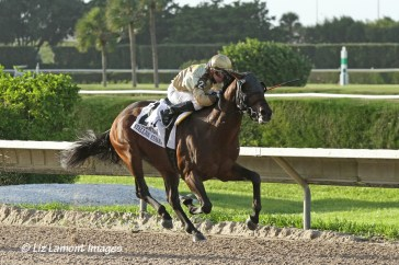 Speak Logistics (FL) with jockey Angel Serpa