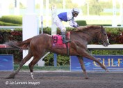 2011 Fountain of Youth Stakes