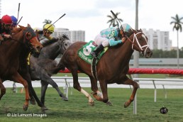 Channel Lady (KY) with jockey Javier Castellano on board wins the 2013 Suwannee River GIII Stakes