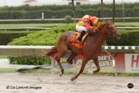 Rose to Gold (KY) with jockey Jesus Rios on board breaks her maiden in the Lindsay Frolic Stakes