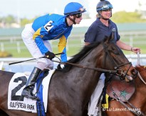 Lady Banks (ON) with jockey Joseph Rocco Jr on board in the post parade of the Davona Dale Stakes G2