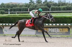 My Brown Eyed Guy (FL) with jockey Eduardo Nunez on board wins the Dr. Fager Division of the Florida Stallion Stakes