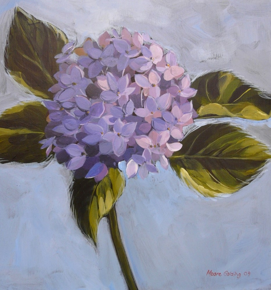 Blue Hydrangea. Acrylic on canvas 41x41x4cms 2009©  SOLD