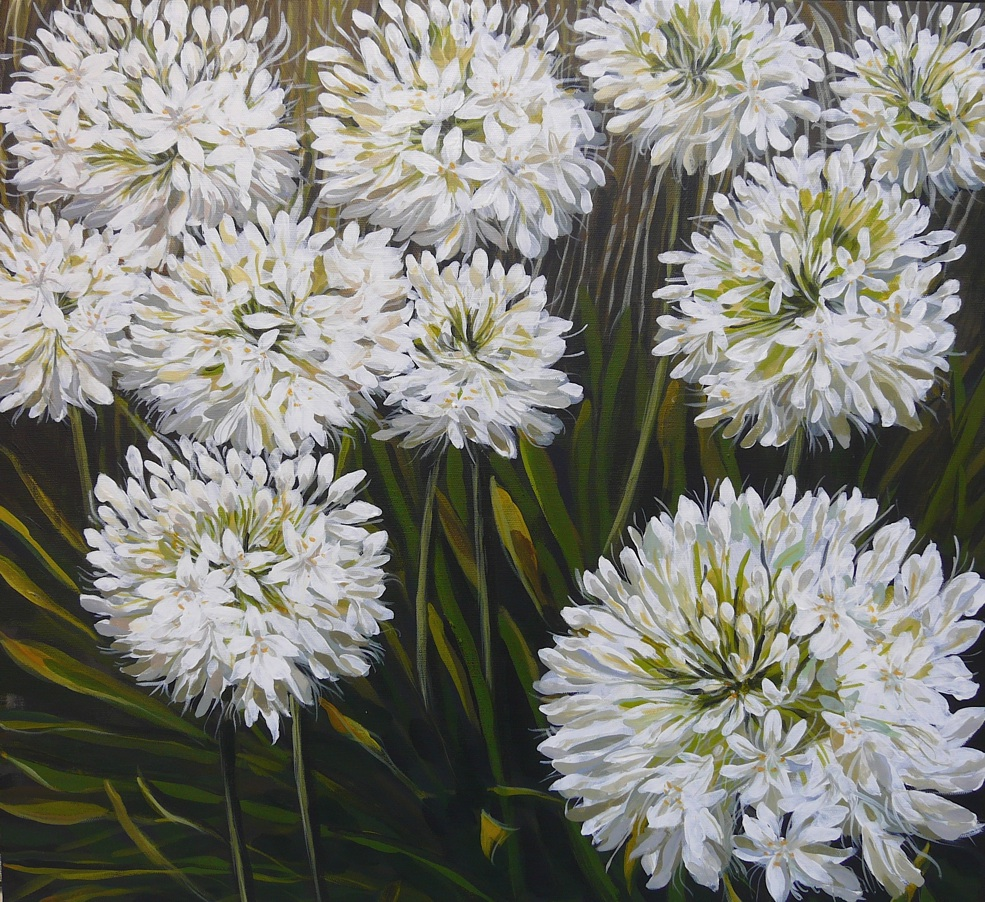 White Agapanthus. Acrylic on canvas 61x61x4cms 2008©  For sale. Enquiries to lizmg@bigpond.net.au