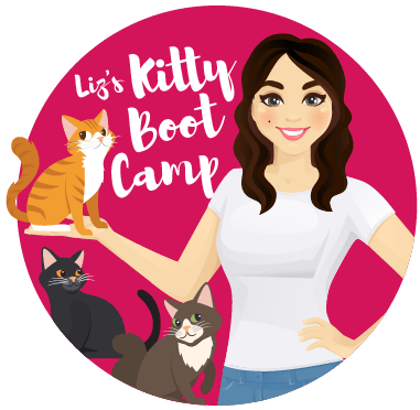 Liz's Kitty Boot Camp Logo