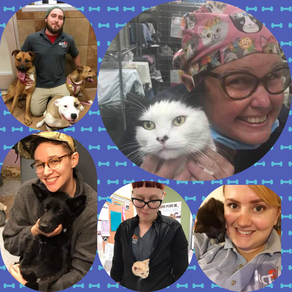 Collage of people with cats and dogs