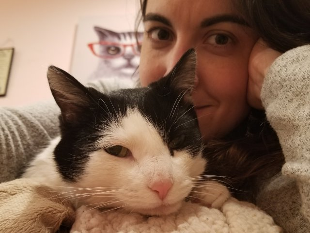 Black and white female cat with woman.