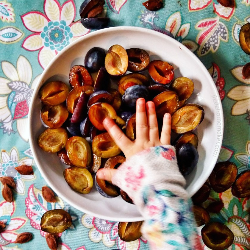 A toddler's hand patting down pitted blue plums in a white baking dish. Background is a floral tablecloth. Recipe from lizziehomemaker.com.