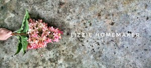 Lizzie Homemaker Toronto foodie mom blogger