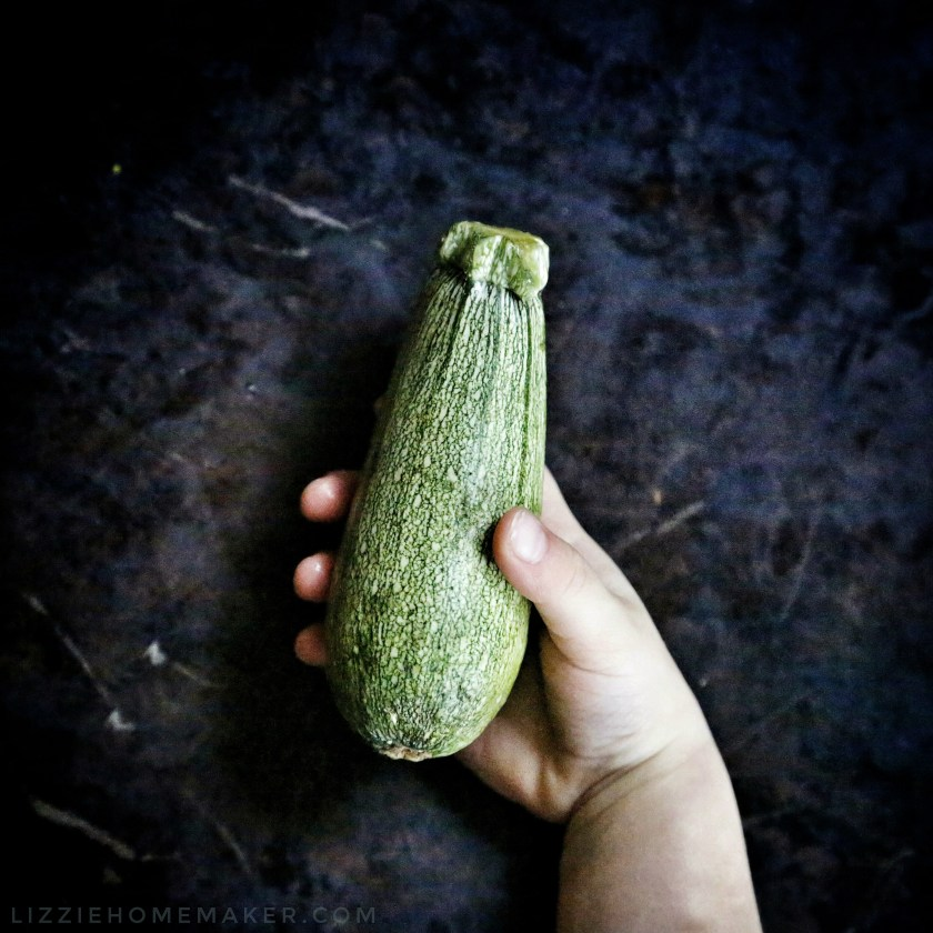 Lizzie Homemaker Vegetable Marrow hand artistic beautiful