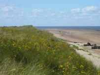 North West Norfolk, setting for BOOT CAMP BRIDE (2)