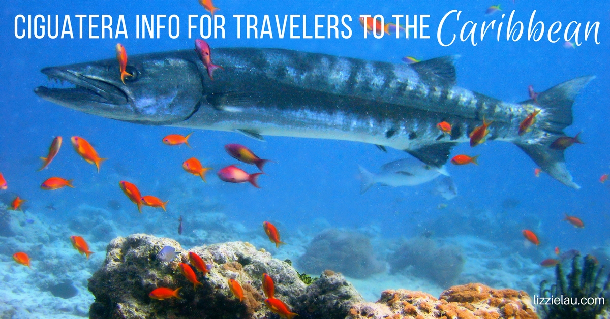 Ciguatera Info For Travelers to the Caribbean