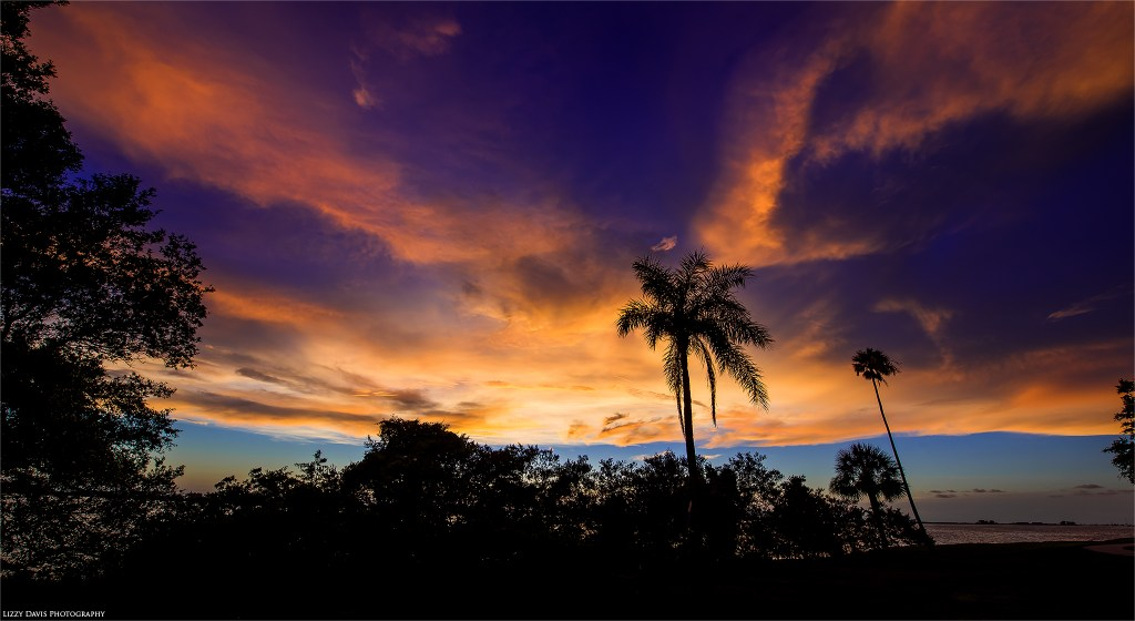 Edgewater Drive Park sunset photos in Clearwater, FL. ©Lizzy Davis Photography