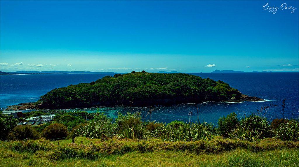 Scenes from NZ: Goat Island. | Beach photography by Lizzy Davis.