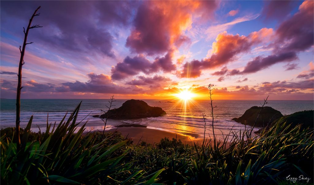 Sunrise from Paritutu Centennial Park, New Plymouth. | New Zealand travel photography by Lizzy Davis.
