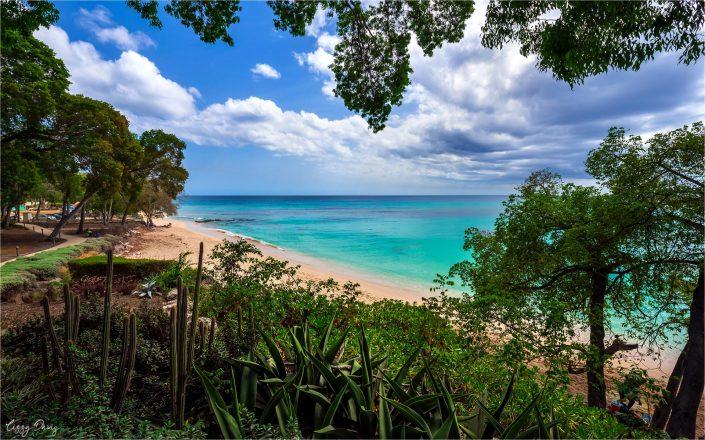 Beaches of Barbados in Photos: Batts Rock Beach