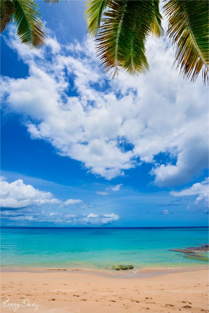 Tranquil turquoise water and soft sand on Barbados west coast.