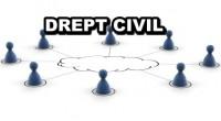 Modele actiuni drept civil