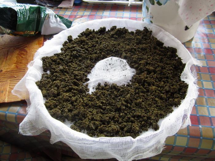 Химках без конопли сколько грамм с 1 куста марихуаны
