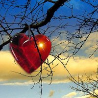 Kratki ljubavni romani (ljubići)