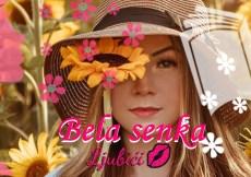 bela senka - ljubavni roman na ljubici.com