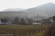Leinsweiler from Sonnenberg-9788 - Kopia