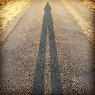 day 129 long leggy shadow