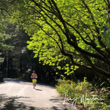 24 running the spring green 3764