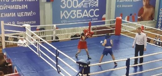 Первенство Кемеровской области по боксу
