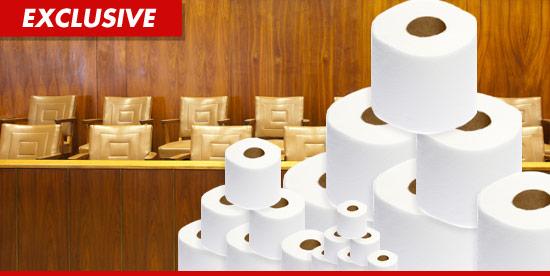1107_jury_toilet_paper_ex