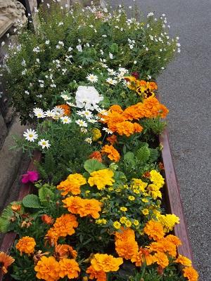 Holy Trinity flower trough