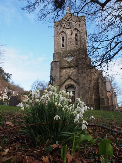 Snowdrops in the churchyard.