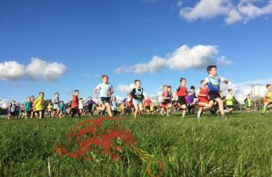 Carmarthenshire Primary Schools Cross Country Championships