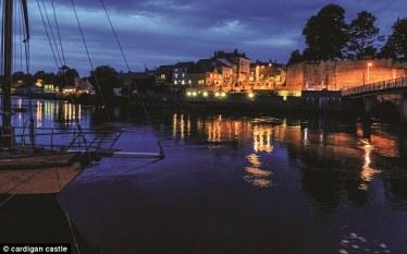 Cardigan river by night