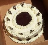 Chocolate Dream Cake