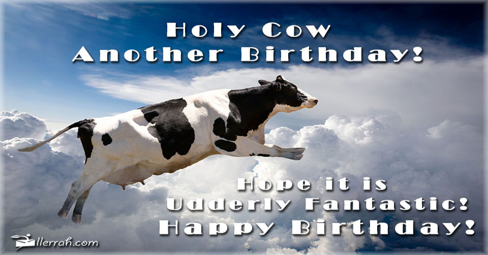 Holy Cow Another Birthday