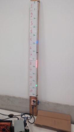 llimargas.cat - linear clock 1