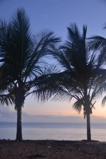 Beach in Kourou