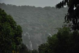 Waterfalls after a Tropical Rain Shower