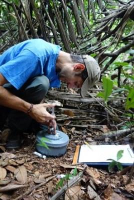Clemen measuring soil respiration