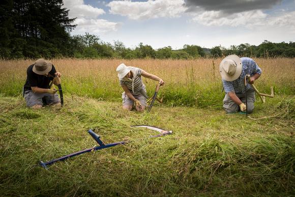 sharpening scythes