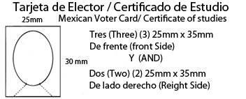 Tarjeta de Elector Certificado de Estudios , Mexical Voter Card , Mexican certificate of studies